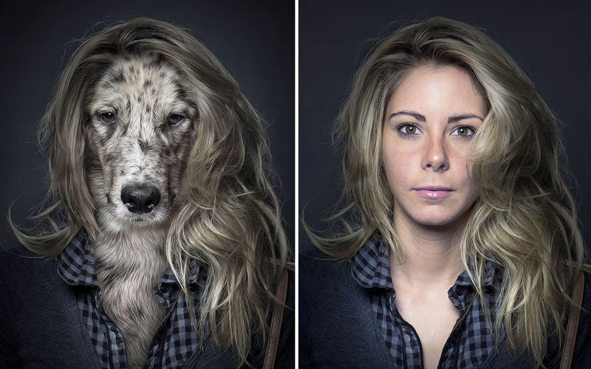 Dog owners do look like their pets