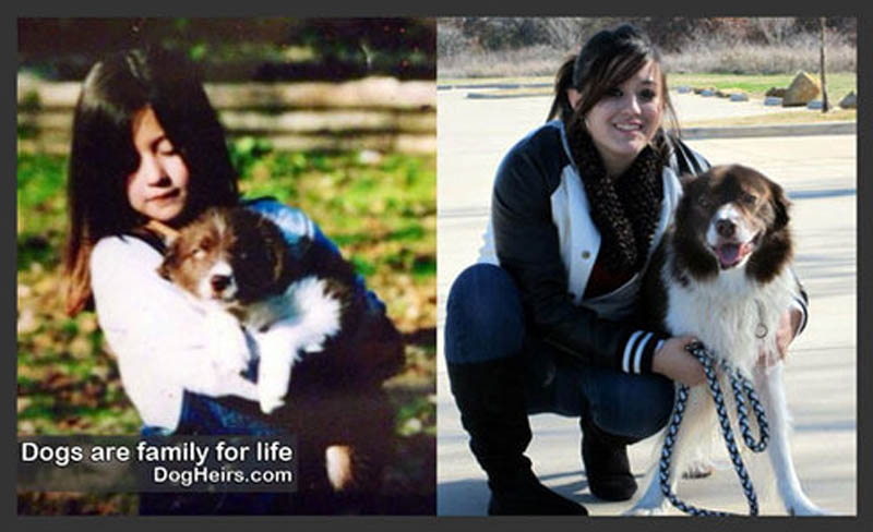 dogs-are-family-for-life-small46