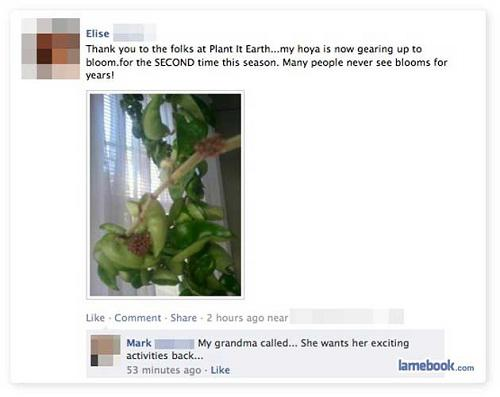 Facebook People who got owned on