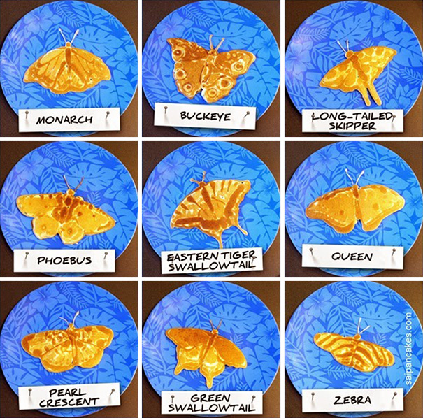 Detailed Pancakes: Educational As Well As Delicious