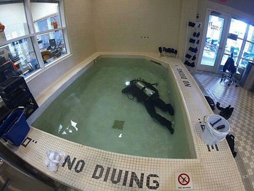 I do what I want no diving