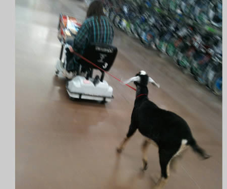 Strange And Funny Looking People Of Walmart (3)