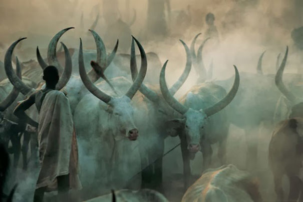 The Dinka Tribe, South Sudan (12)