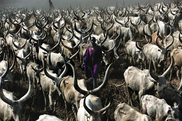The Dinka Tribe, South Sudan (14)