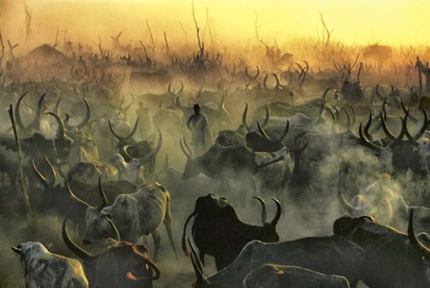 The Dinka Tribe, South Sudan (15)