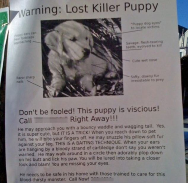 Hilarious Pictures Of Missing Pet Sighs