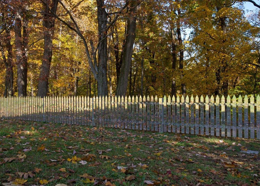 Mirror fence: reflecting the changing landscape