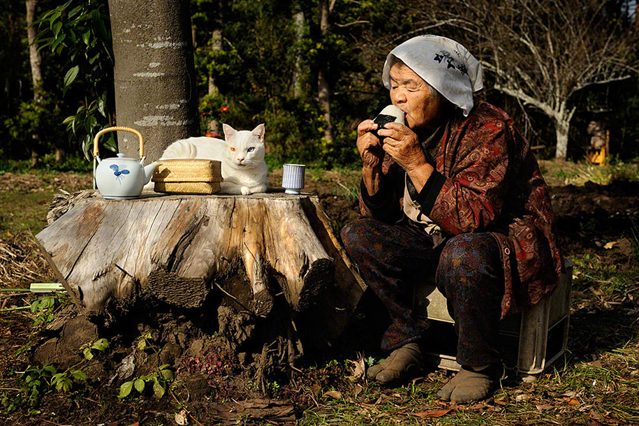 Misao The Old Lady And Her Cat Fukumaru