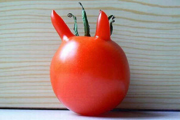 33 Naughty Fruits and Vegetables Who Forgot They're Just Plants