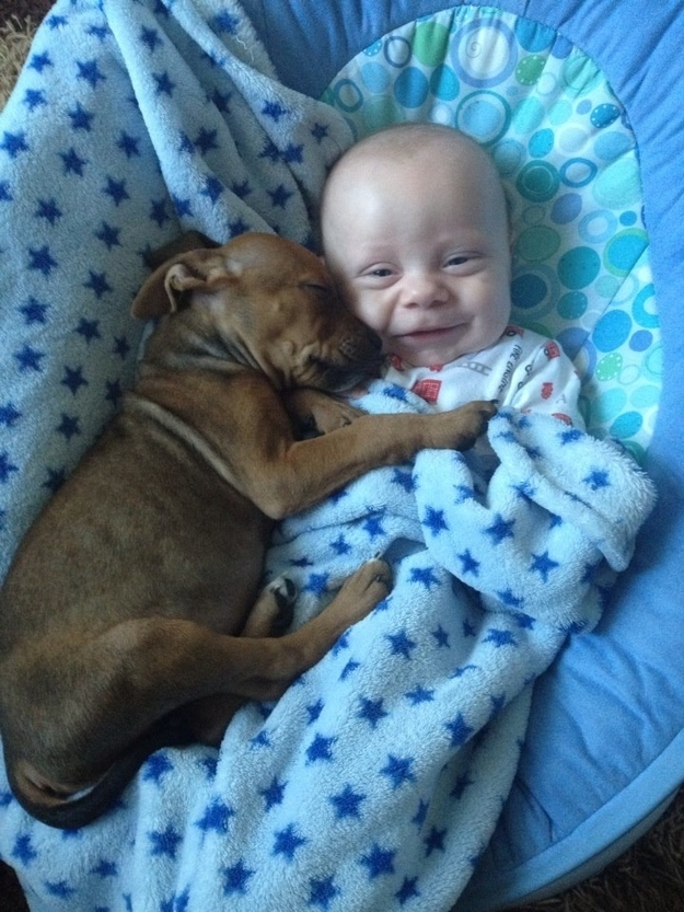 5. When this ball of wrinkles met his new best friend