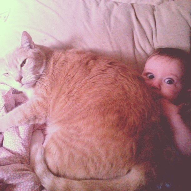 8. When nap time just got too snuggly