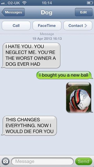 hilarious-text-message-from-dog (4)