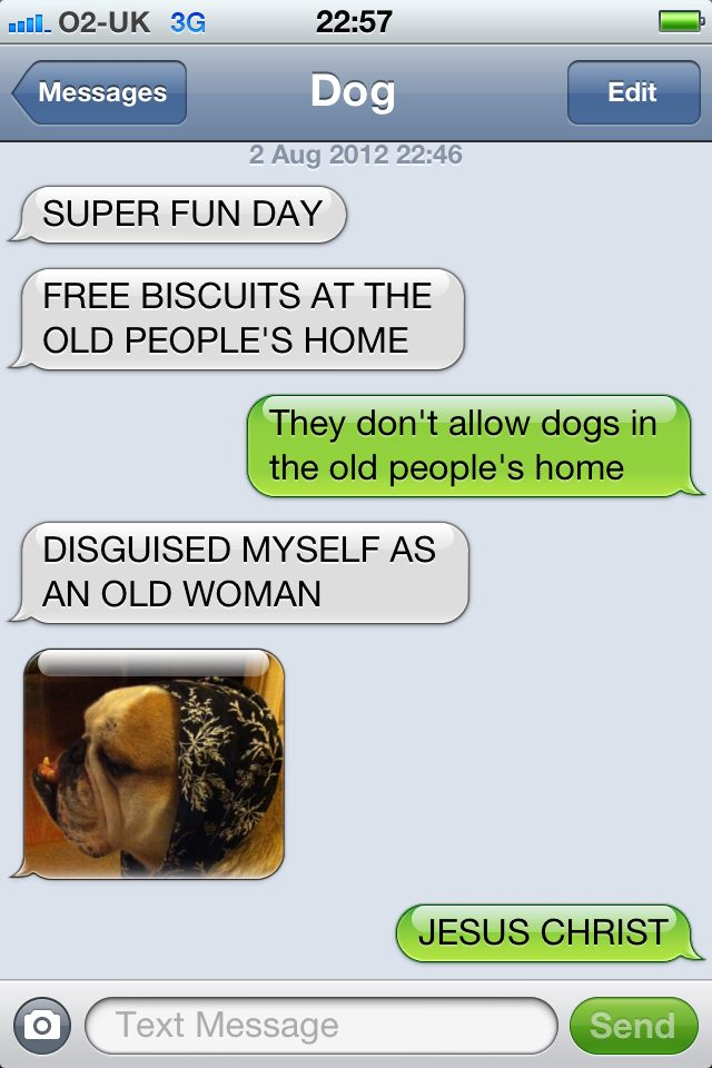hilarious-text-message-from-dog (6)