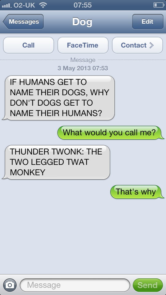 hilarious-text-message-from-dog (8)
