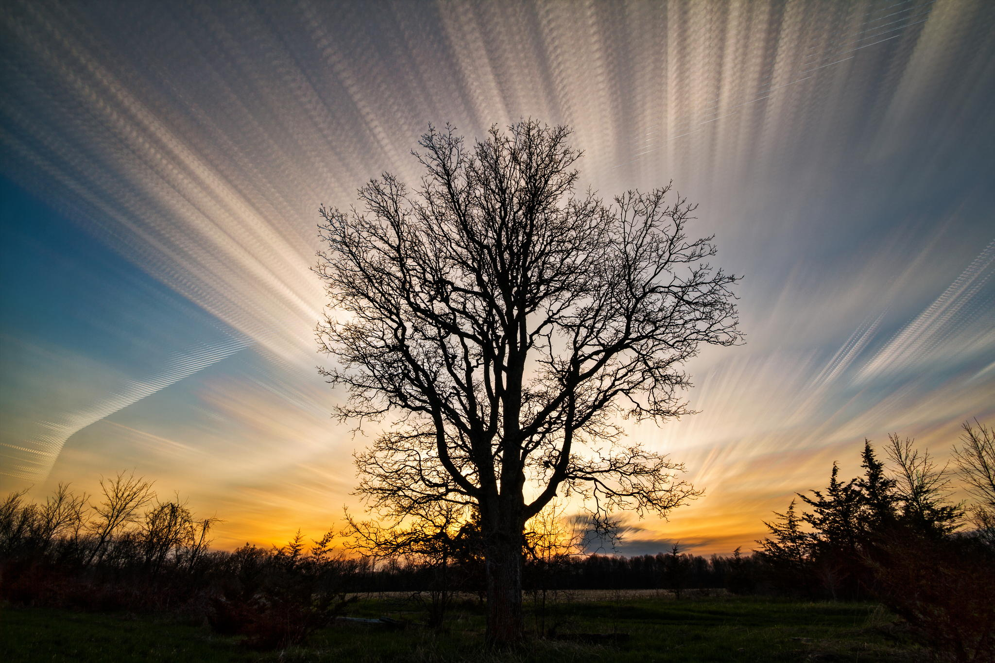 Photograph Reach for the Clouds by Matt Molloy on 500px