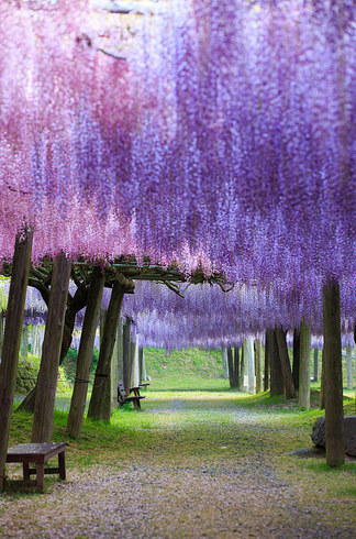 Breathtakingly Place That Only Exist In Fairy Tales