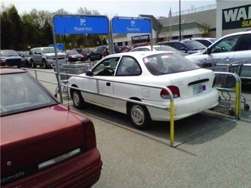 The person who parked this car.