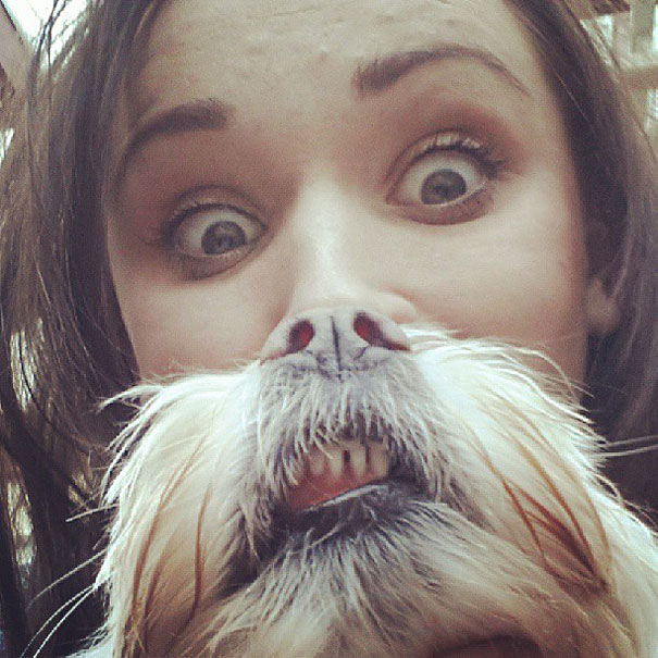 What if People Got Dog Beards? Dog Owners Take Photos to Compare With Cat Beard