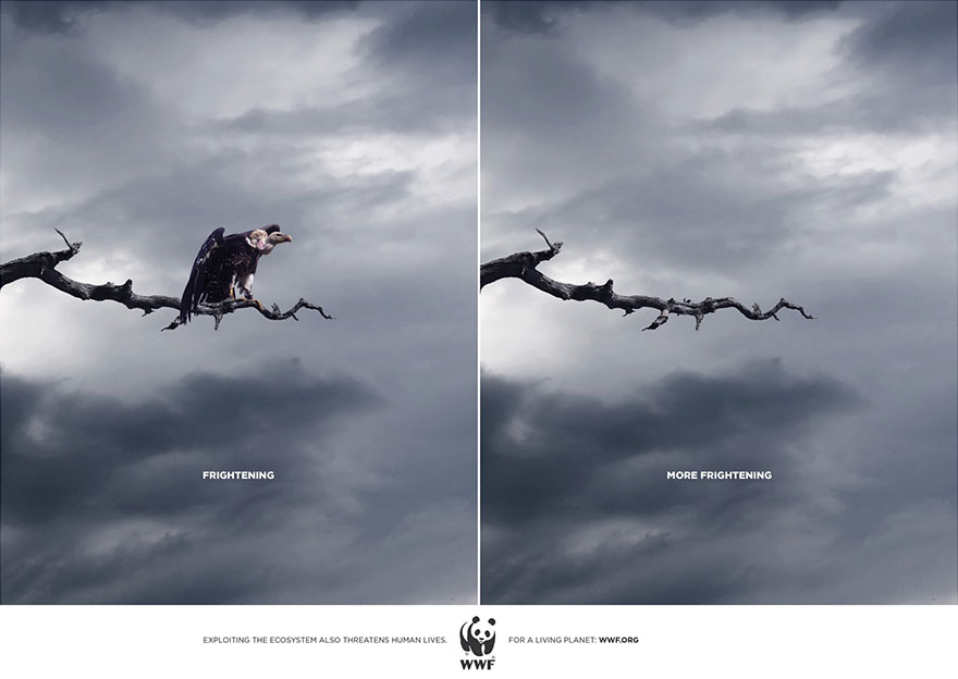 Célèbre Here're 33 Animal Ad Campaigns That Help Raise the Awareness of  BO42