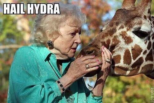 hail hydra meme betty white