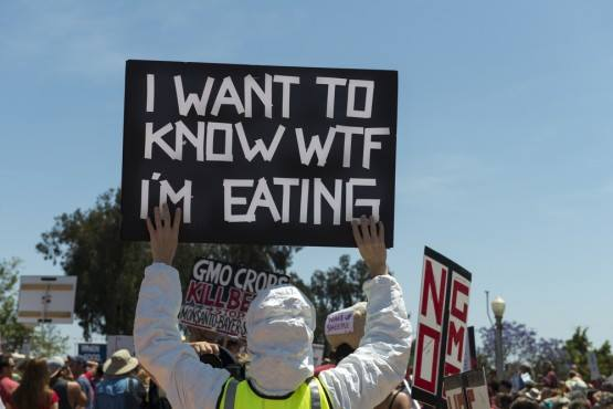 I Don't Mean To Worry You, But The Truth About The Food We Are Eating Are Terrifying