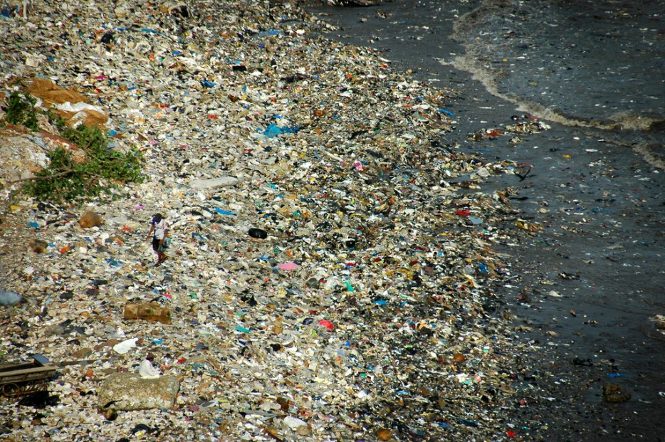 powerful pictures make you want to stay away from plastic products