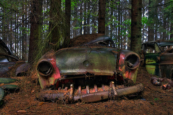 Traffic Jam stuck in Belgian forest for 70 years, it's like time has frozen!
