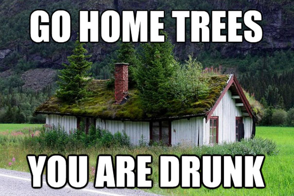 go-home-you-are-drunk
