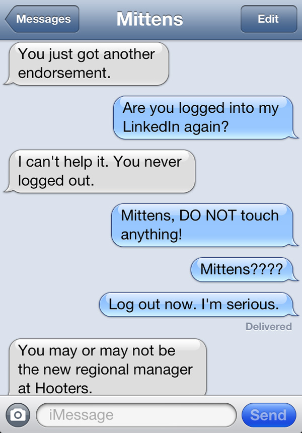 texts-from-cats