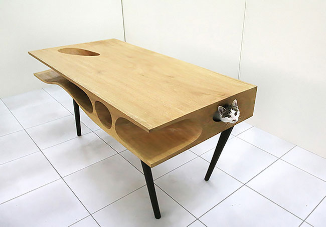 clever inventions that will make your life so much easier Cat Cave