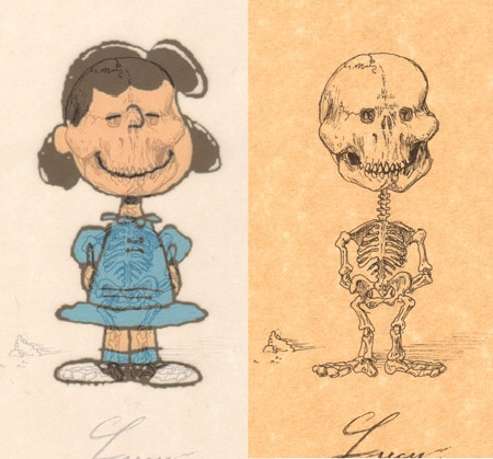 cartoon skeletons cartoon skeletons Lucy