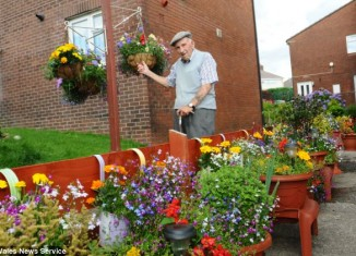 Des Churchill Want A Garden For His Apartment, So He Spends 25 Years