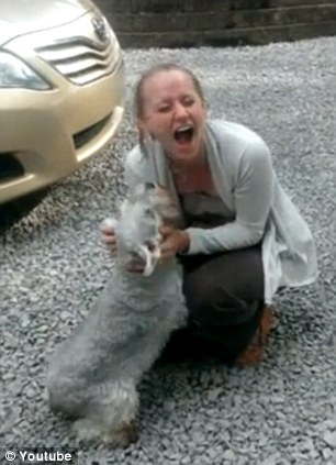 Lovely dog passes out because she was too excited to see her owner