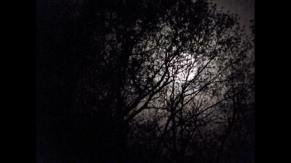 It's amazing out there awesome pictures Moon and Fog