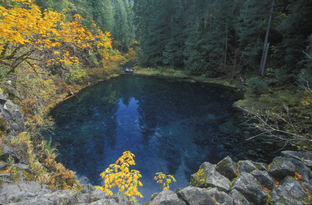 swim places spots pools 28. Blue Pool, McKenzie River, Oregon