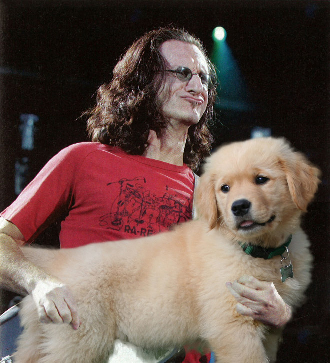 dogs-play-the-part-of-the-guitar