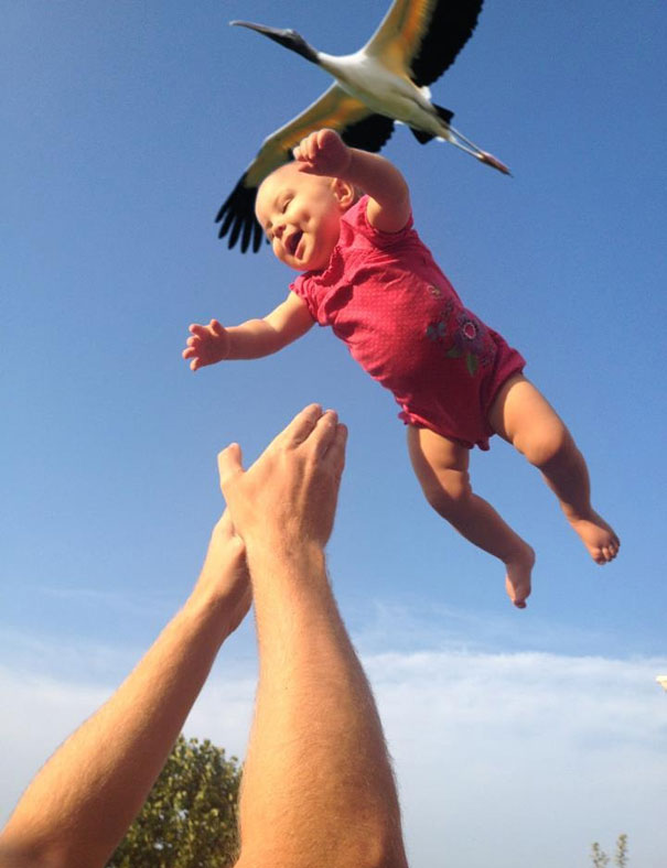 awesome perfectly timed pictures