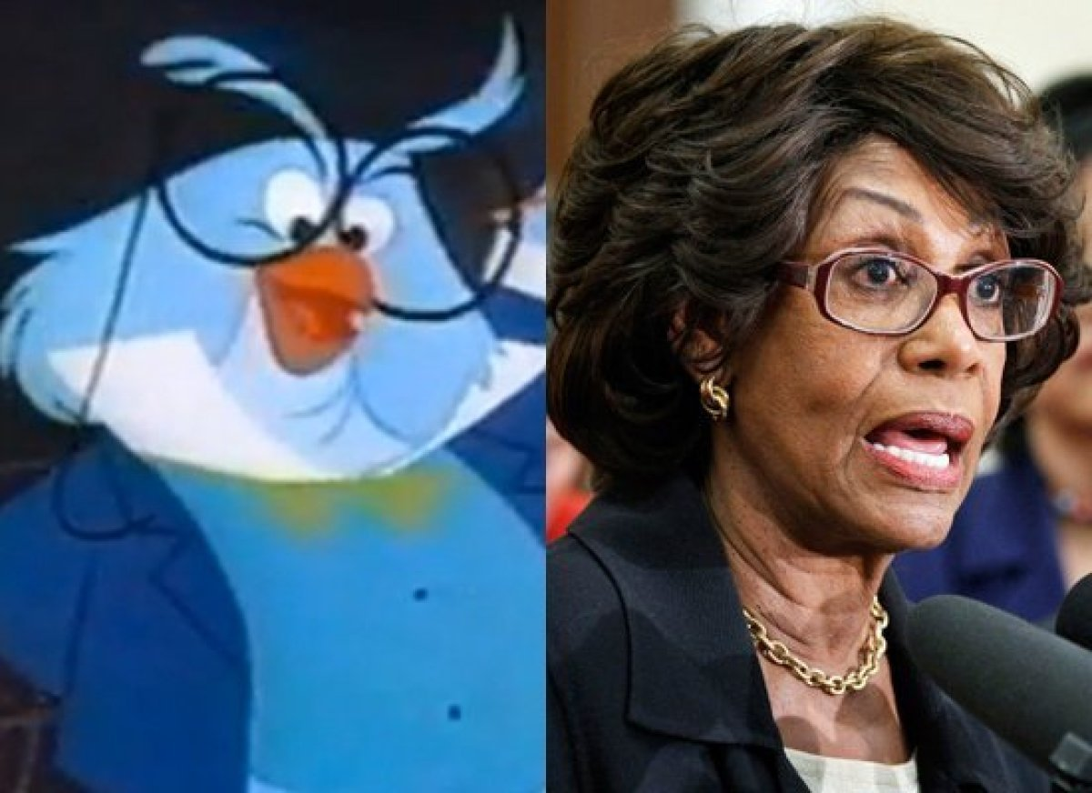 Politicians Who Look Like Disney  Rep. Maxine Waters (D-Calif.) & Professor Owl (House of Mouse)