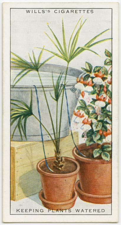 Cigarette Card Life Hacks from 1900 to 1910, this is old school