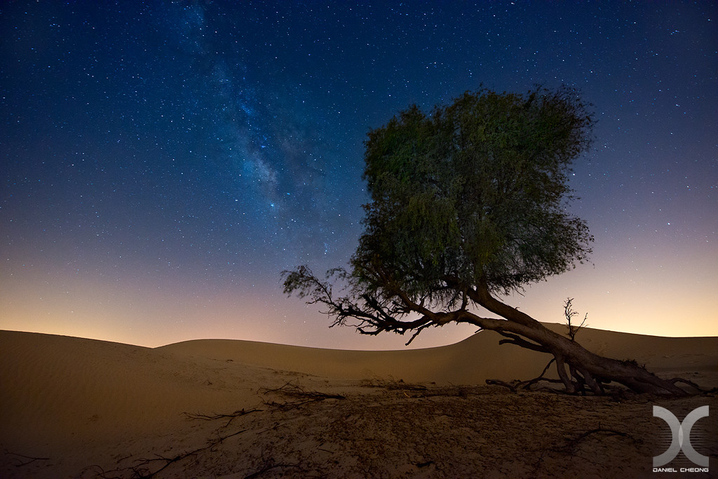 fancy photographs of some big cities by Daniel Cheong   Reaching the Milky Way