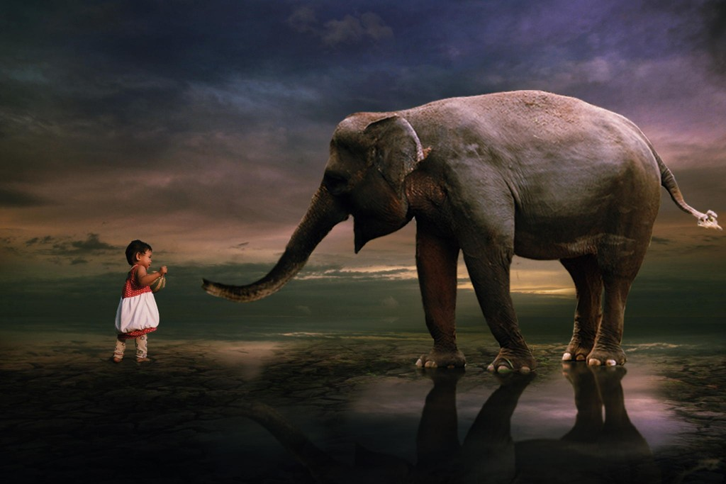 incredibly stunning children's photographs by 3 Joko let's play