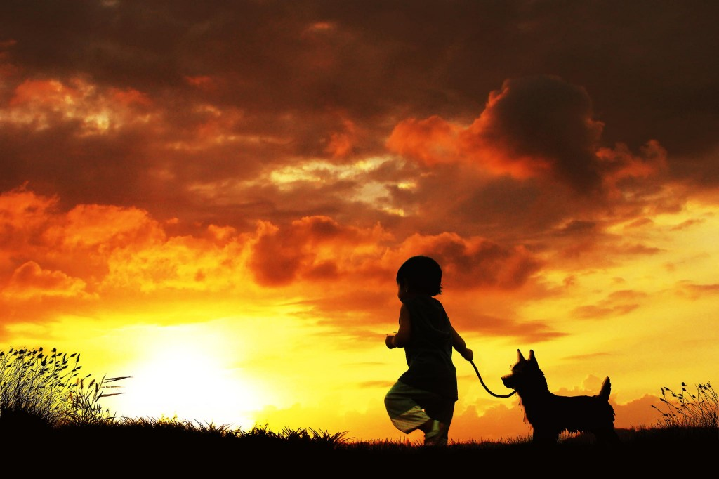 incredibly stunning children's photographs by 3 Joko suset with little dogs....