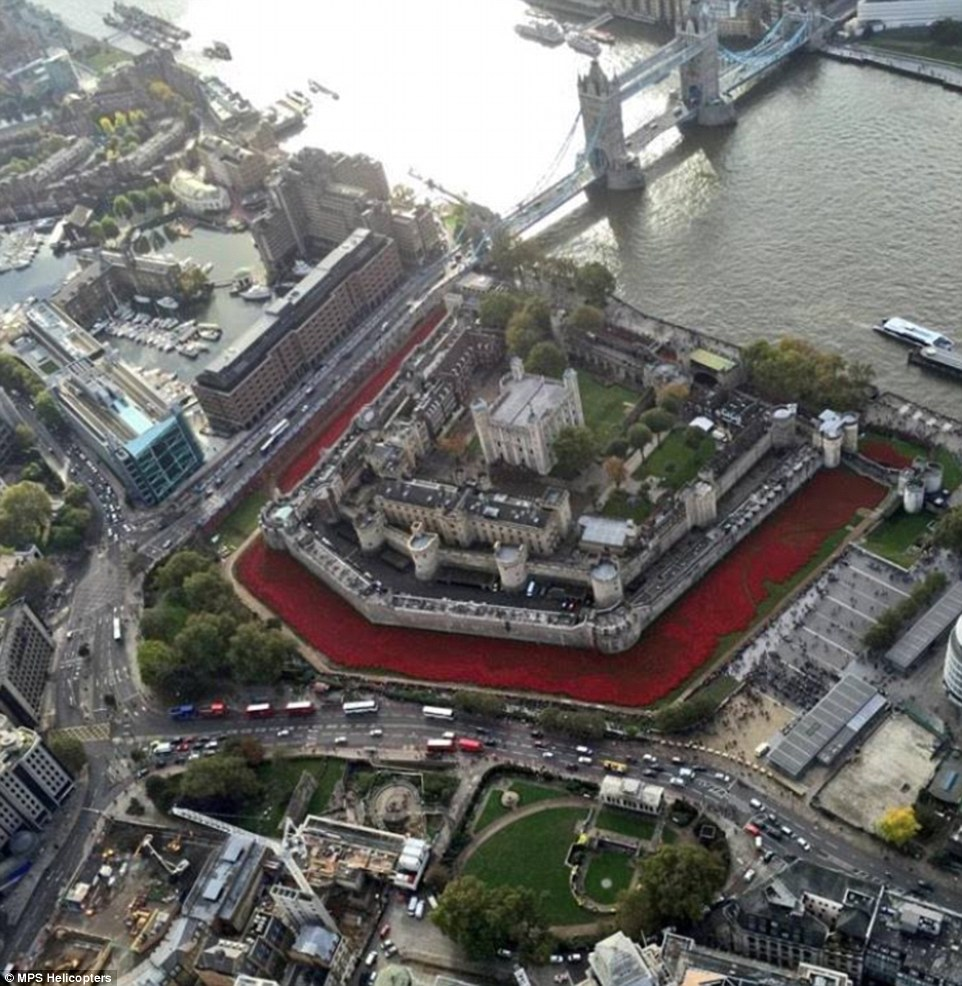 Scarlet moat: The poppies, each hand made carefully before being planted, can clearly be seen surrounding the Tower of London