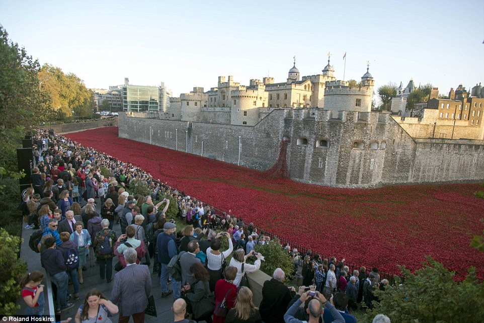 Magnificent: Millions of people have visited theBlood Swept Lands and Seas of Red installation at the Tower of London since July