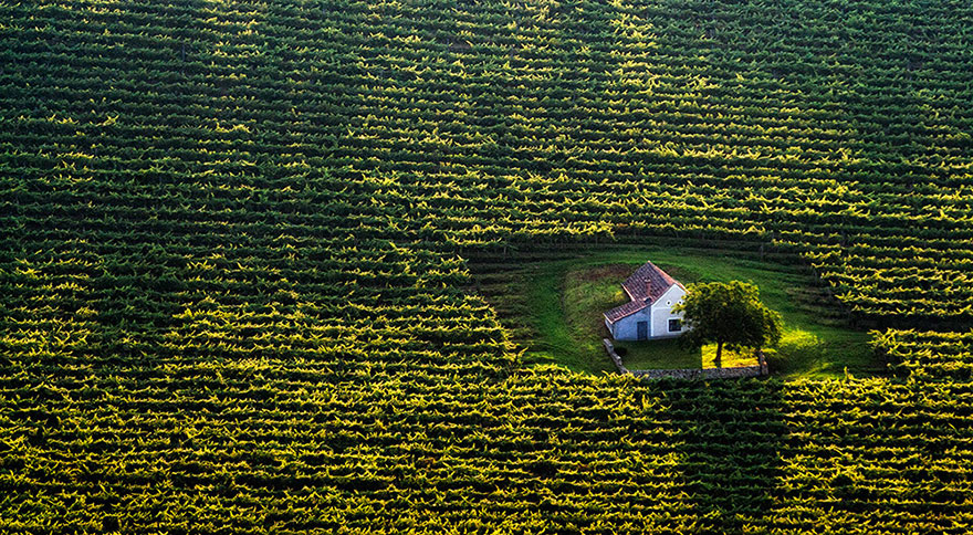 Tiny House In The Fields, Hungary