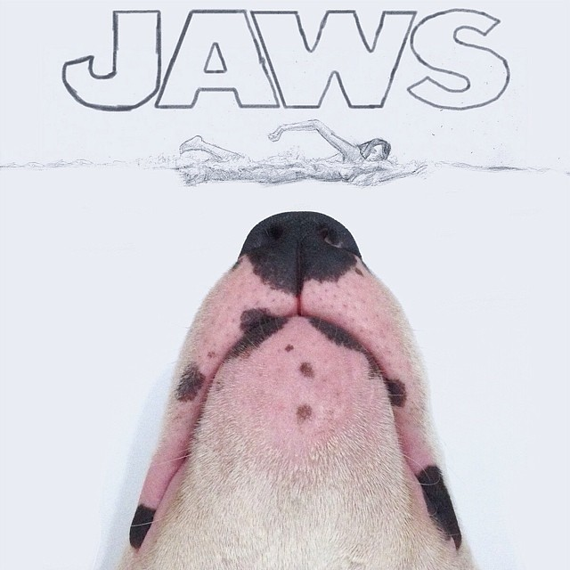 Bull Terrier Helps To Create Witty Illustrations That You Will Definitely Love