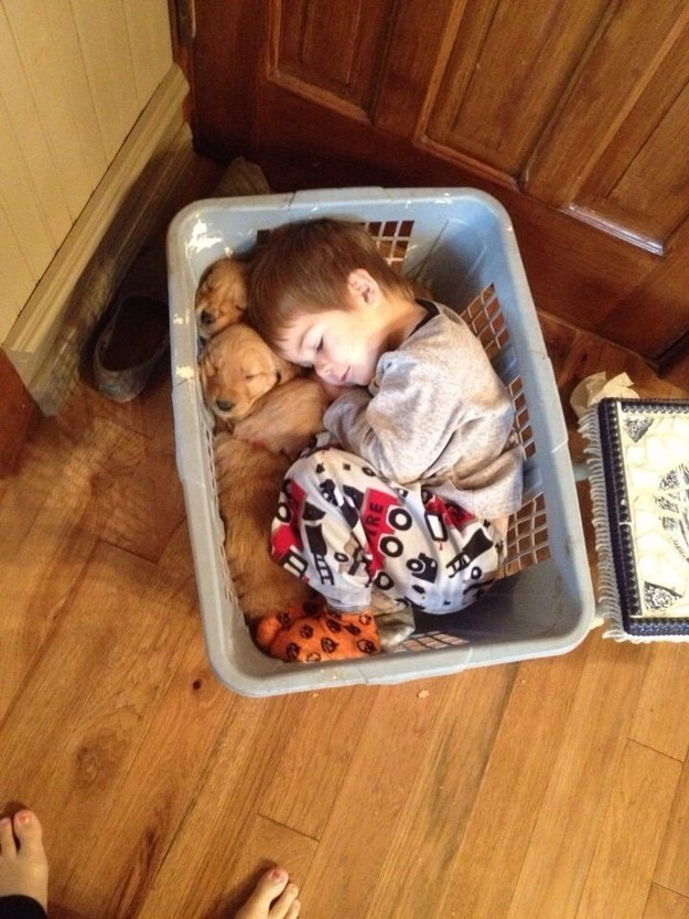 And this laundry basket snuggle session that took adorable to the next level.