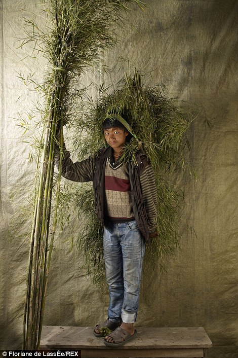 A young man from Nepal uses a head strap to carry foliage while carrying a bundle of sticks with his hands