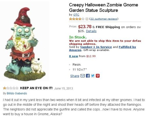 21.) Whatever you do, DON'T BUY THIS GNOME!