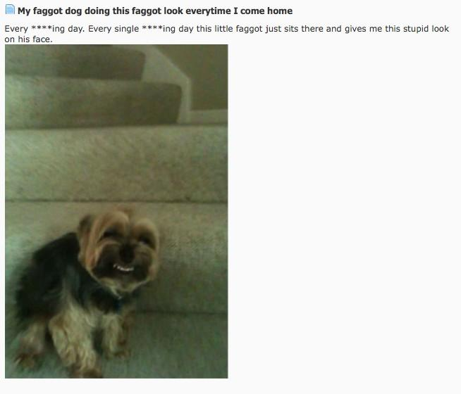 35 Funny Pictures You Can't See without Laughing